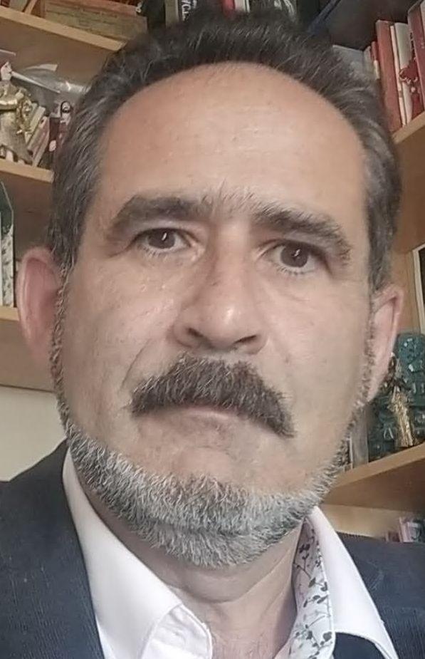 Dr. Leon Mishnaevsky Jr