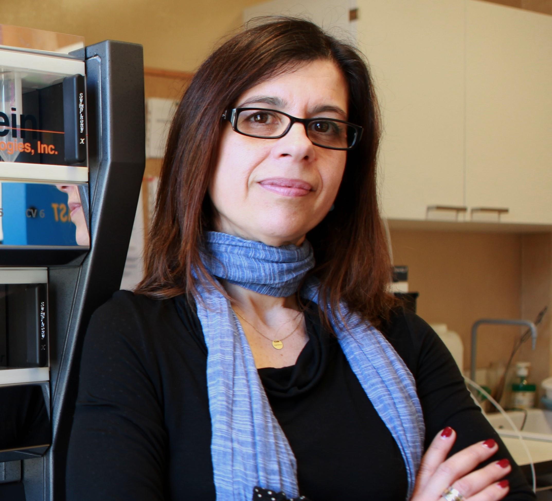 Assoc. Prof. Paula A. C. Gomes